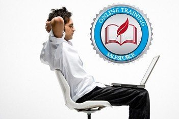 a professional who looks at the laptop with info on Salesforce training.