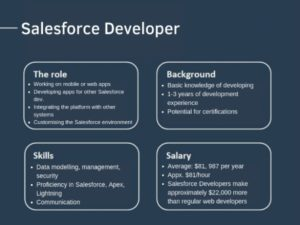 Salesforce Developer - Career Insights