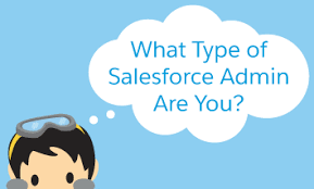Salesforce Personality Type